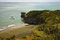 Auckland;Muriwai;Muriwai_Beach_Gannet_Colony;West_Coast_Beaches;sea_fishing;fish