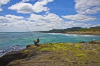Auckland;Muriwai;Muriwai_beach;West_Coast_Beaches;sea_fishing;fishing;angling;bo