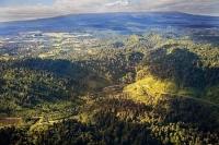 Aerial;Ohakune;Tongariro_National_Park;Timber;timber_industry;river;Trout_Fishin