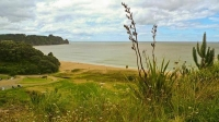 Hot_Water_Beach;sandy_beaches;bachs;holiday_homes;blue_sky;blue_sea;bush;native_