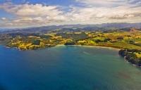 Aerial;Hot_Water_Beach;sandy_beaches;bachs;holiday_homes;blue_sky;blue_sea;bush;