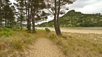 Pauanui;sandy_beaches;bachs;holiday_homes;blue_sky;blue_sea;bush;native_forrest;