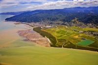 Aerial;Thames;Coromandel;sandy_beaches;bachs;holiday_homes;blue_sky;blue_sea;bus