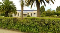 Te_Puia_Springs;District_Council_Building;palms;palm_tree