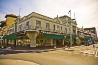 Hastings;Hawkes_Bay;suburburban;Gardens;palms;palm_trees;Art_Deco;lamp_posts;scu