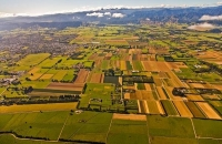 Aerial;Levin;Levin_Paddocks;Kapiti_Coast;golden_sand;horticulture;agriculture;ma