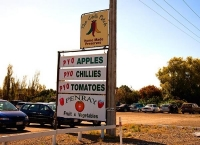 Levin;Kapiti_Coast;War_Memorial;Vege_sale_sign;horticulture;agriculture;market_g