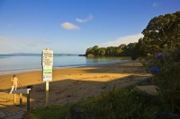 Coopers_Beach;Northland;sand_dunes;sandy_beaches;bachs;holiday_homes;bush;native