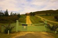 Karikari_Peninsula;Northland;Karikari_Estate_Vineyard;Karikari_Estate;Vineyard;d