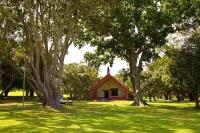 Waitangi_Treaty_Grounds;Northland;Marae;Maori_carving;Maori_warrior