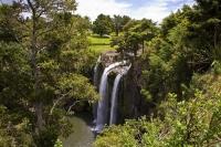 Whangarei;Northland;waterfall;Whangarei_Falls;bush;native_forrest