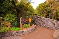 Hallard_Gardens;Taranaki;Mount_Taranaki;Mount_Egmont;landscape;Hallard;Gardens;E