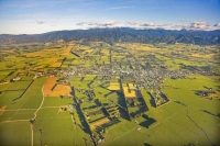 Aerial;Greytown;Wairarapa;native_forest;sheep;sheep_shearing;Tararua_Ranges;agri