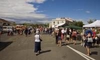 Takaka_and_River;Martinborough;Wairarapa;agricultural;vineyards;wine_production;