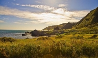 Palliser_Bay;Wairarapa;rocky_shoreline;coast_road;lighthouse;seals;bachs;holiday