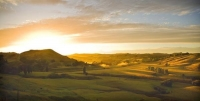 Wairarapa_Landscape_Image;Wairarapa;golden_light;sunrise;long_shadows;New_Zealan