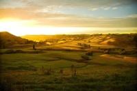 Wairarapa_Landscape_Image;Wairarapa;golden_light;long_shadows;paddocks;Dawn;New