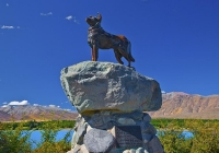 Lake_Tekapo;South_Canterbury;Canterbury;Sheep_Dog_Statue;tribute_to_the_working_