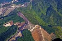 Aerial;Marlborough_Sounds;Marlborough;bush;native_forrest;hills;mountains;Forest