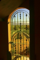 Vineyards;Marleborough;Wairau_Plains;vines;vintners;grapes;Wrought_Iron_Gate