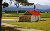 Vineyards;Marleborough;Wairau_Plains;vines;vintners;grapes;Clos_Henri;Tasting_ro