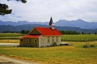 Vineyards;Marleborough;Wairau_Plains;vines;vintners;grapesClos_Henri;Tasting_roo