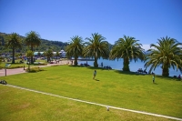 Picton;Marlborough_Sounds;Marlborough;Victoria_Reserve;palm_trees;Picton_Harbour