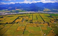 Aerial;Wairau_Valley;Marlborough;bush;native_forrest;irrigation_canal;irrigation