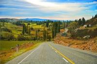 Alexandra;Clyde;Otago;Clutha_River;SH_8;south;Alexandra;poplar_trees;poplars