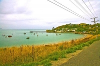 Moeraki;Otago;Yellow_Eyed_Penguins;Moeraki_Boulders;tourists;Moerake_Village;har