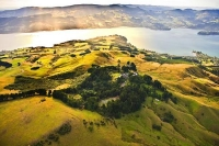Aerial;Otago_Peninsula;Otago;harbour;golden_sands;Larnach_Castle;golden_light