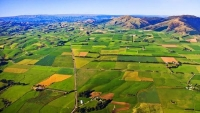 Aerial;Tapanui;Otago;Tapanui_Country;sheep;sheep_country;sheep_farming;Blue_Moun