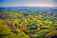 Aerial;Tapanui;Otago;sheep;sheep_country;sheep_farming;green_paddocks