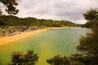Kaiteritiri;Tasman_Bay;native_forrest;forest_track;tramping_track;trampers;golde