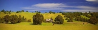 Wakefield;Tasman_Bay;Dilapidated_farm_house;sheep_paddock