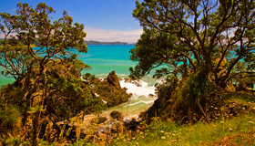 Matauri Bay Coast Images