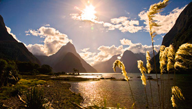 Milford Sound Images
