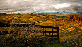 Rangitikei Region Images